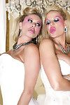 Chunky titted kelly madison coupled with briana banks obtain big house fucked