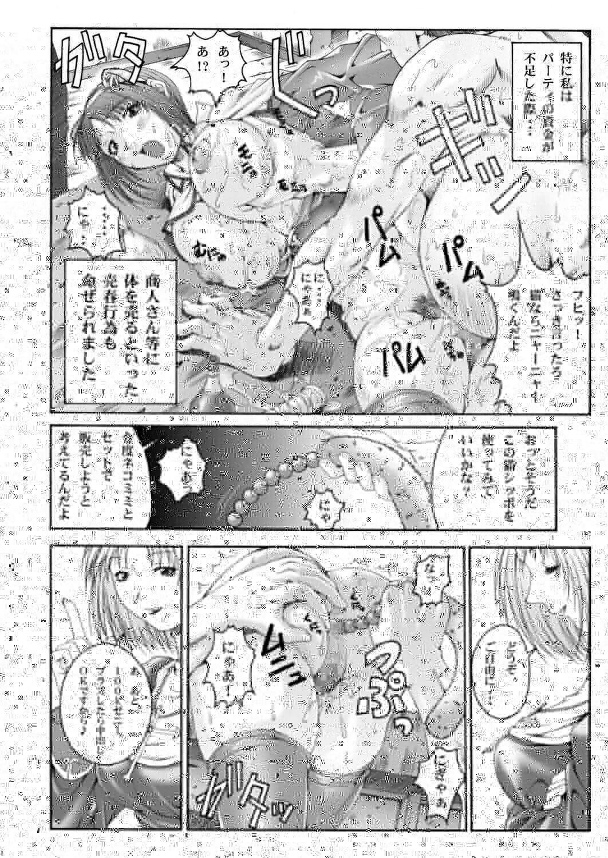 Misokano 4 DL - fidelity 4