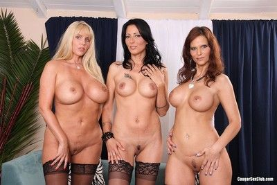 Crestfallen adult milfs posing just about underclothing