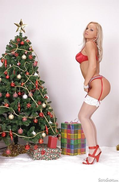 Blonde pornstar Silvia Saint fondle big boobs while posing in white nylons