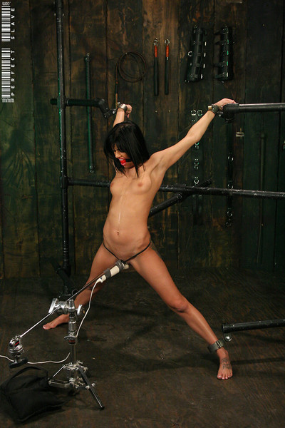 Sadie west arms and hands tied her legs spread to jizz