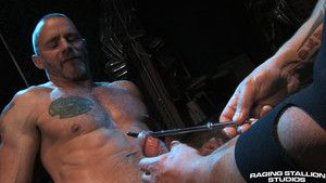 Live sex shows with a catch studs of raging stallion studios!