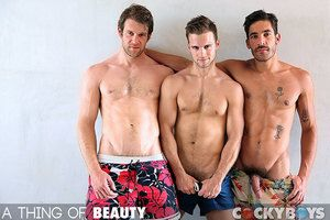 Gabriel Clark, Colby Keller, together with Dale Cooper Fuck ever after other