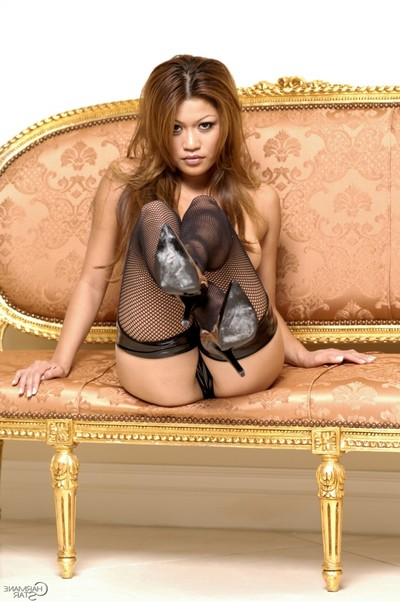 Marvelous charmane star posing in untamed fishnet nylons