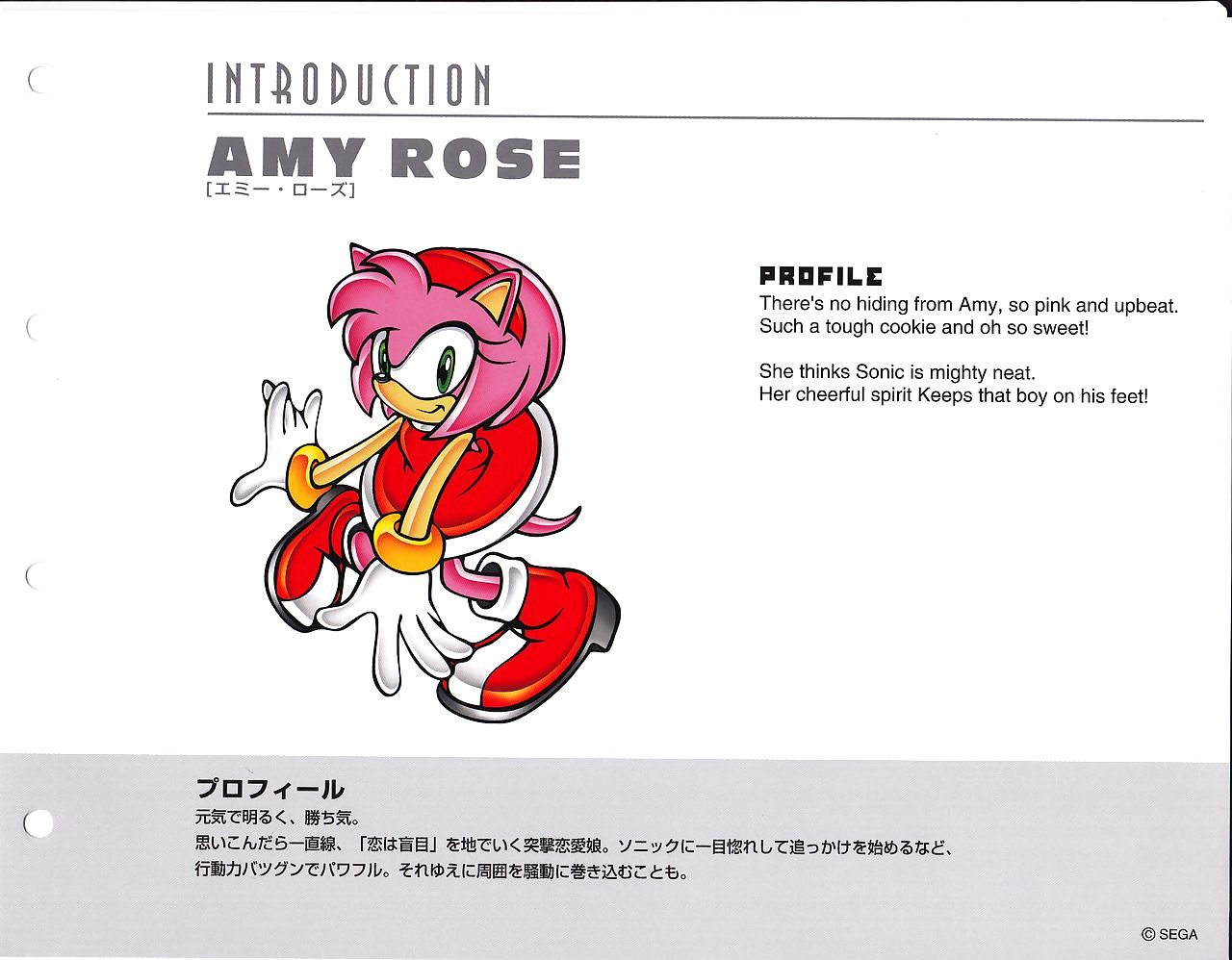 Sonic Incident Stylebook - fastening 2