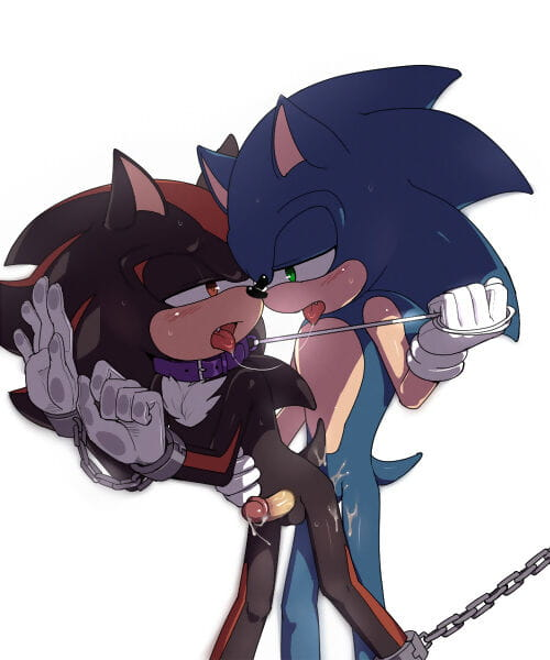 Sonic favorite images - fastening 3