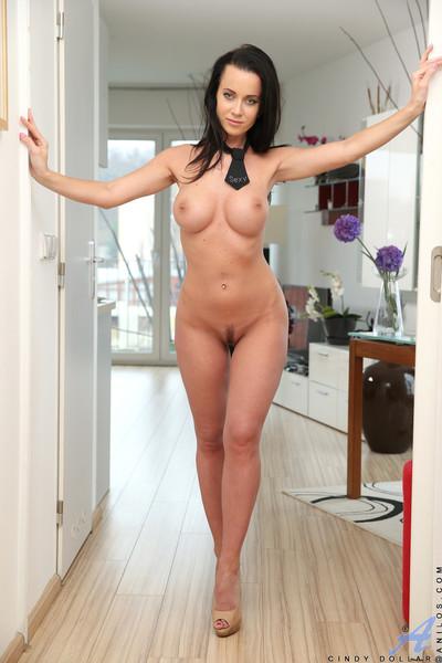 Brunette milf cindy dollar poses naked