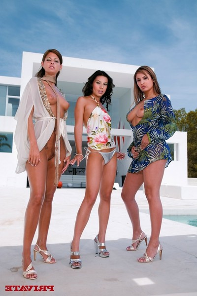 Three admirable models at ibiza sharing a weenie in a foursome